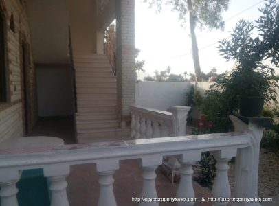 WB3241S Three storey apartment building for sale in Luxor with garden