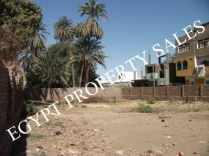 LAN3001S Prime building land with all licenses and wonderful Nile views.