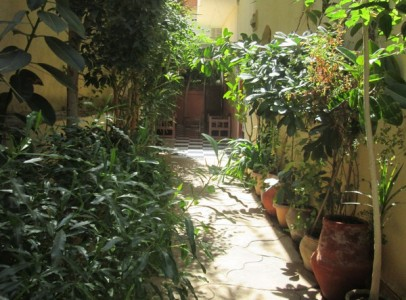 WB26S First floor 2 bedroom apartment Nile view & amazing roof garden with Pergola