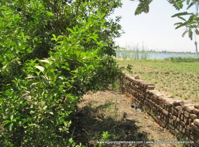 LAN0727S Piece of land Nile front for sale west bank Luxor