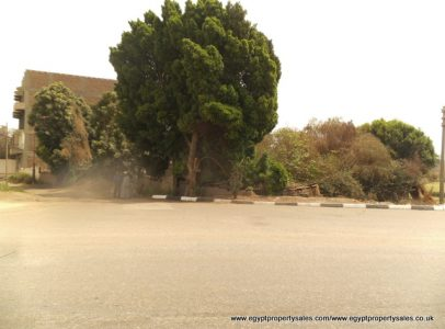 LAN504S Piece of land for sale in Awamia East bank Luxor