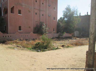 LAN2345S Prime land for sale in Gezira village West Bank Luxor