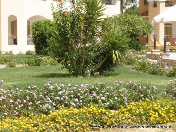 EE1708R Luxury 3 bedrooms flats in Hotel in for rent East Bank of Luxor city