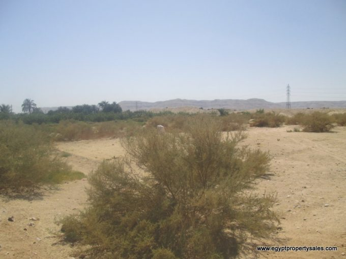 LAN2104S Land for sale in Luxor valid for all investments with Mountain View